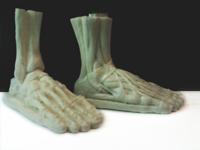 ecorche foot
